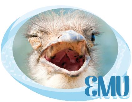 Emu Bild