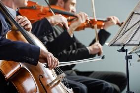 Violine, Bratsche, Cello und Kontrabass