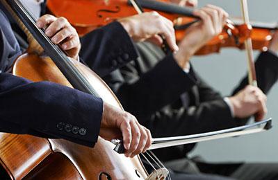 Violin-, Bratschen-, Cello-, und Kontrabass